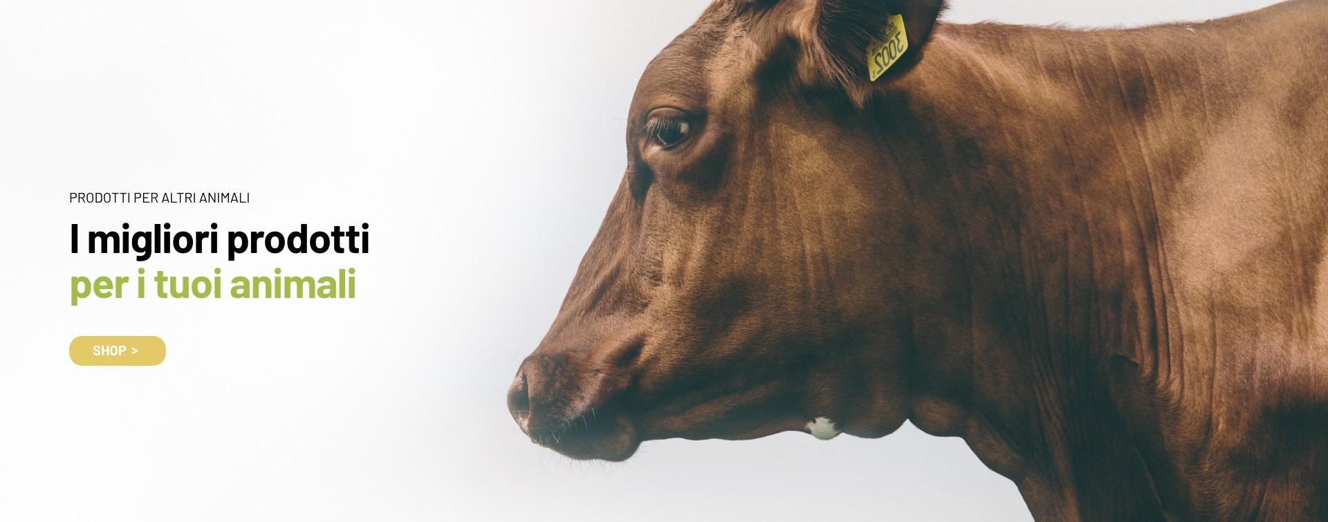 Prodotti per altri animali